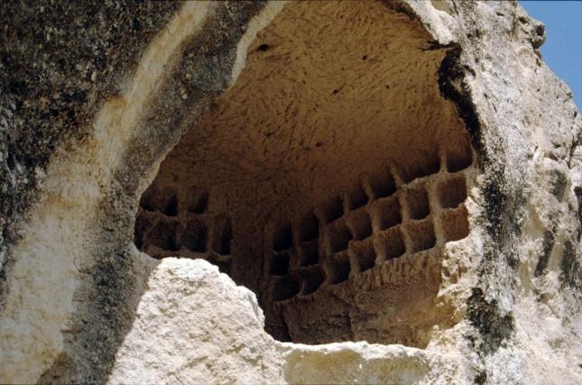 La colombaia della fascia intermedia. Foto Carlo Germani ©Copyright EgeriaCRS riproduzione ed uso vietati.